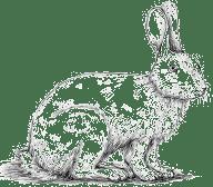 Lapin Elevage et Vente Agneau Ferme pédagogique Gaec du Caire Chaillolet St Michel de Chaillol Champsaur Valgaudemar Hautes Alpes